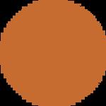 PG-07 Orange
